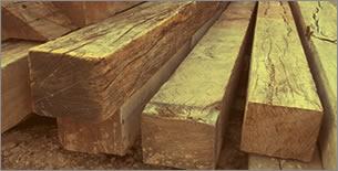 madeiraperobains.jpg